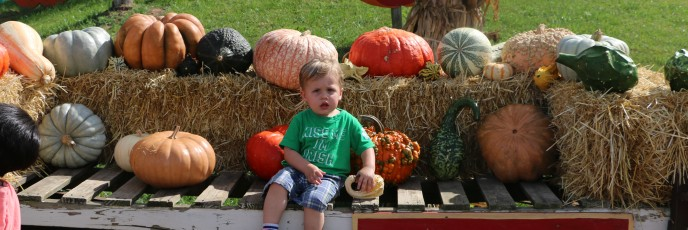 Fun at Cox Farms!