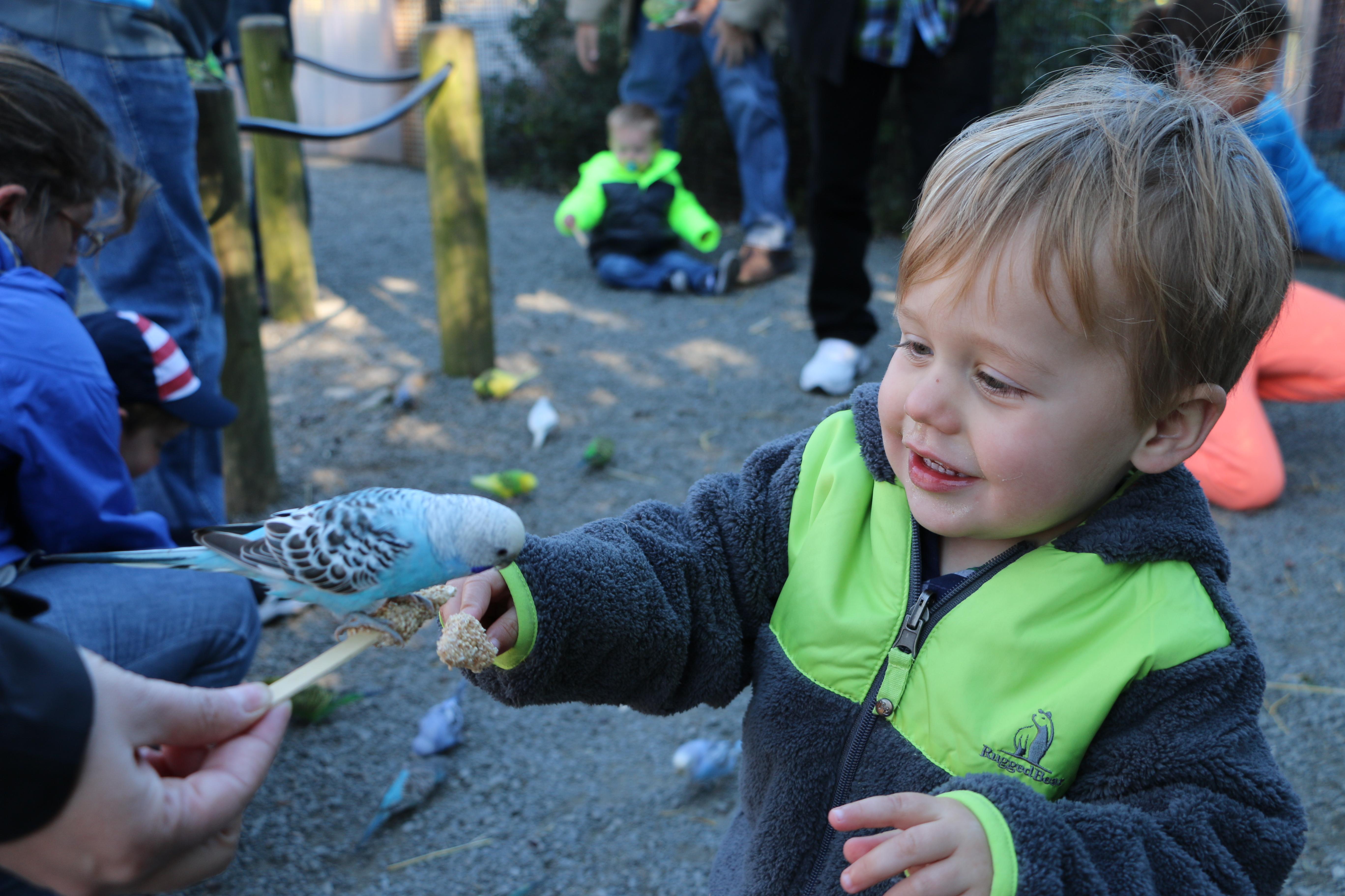 Treats, Not Tricks, at the Zoo